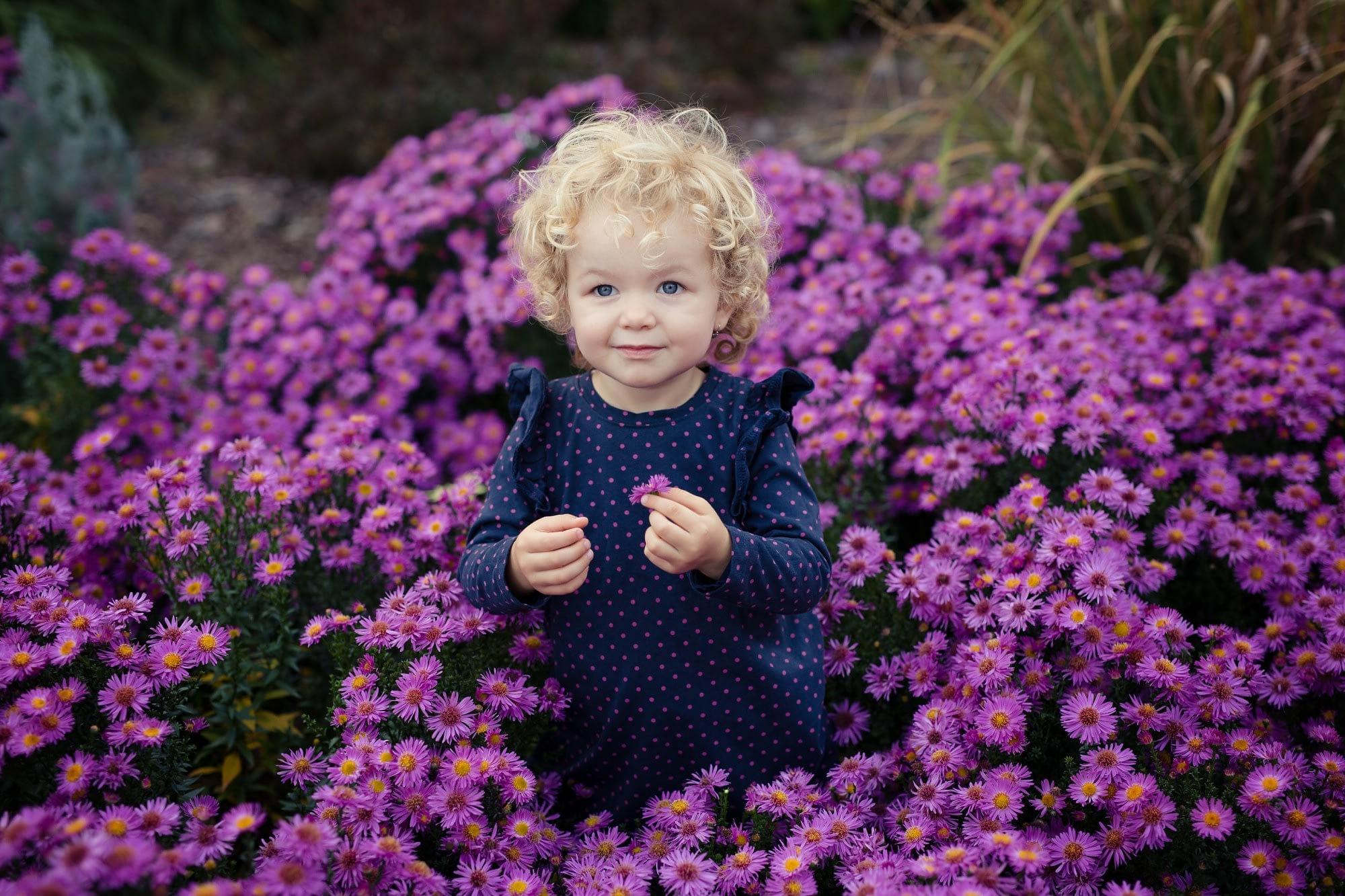 Dětský portrét holčičky v přírodě a krásné fialové chryzantémy