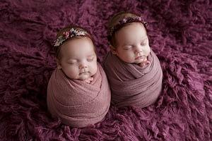Foceni miminek dvojcata v newborn atelieru, potato pose